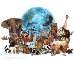 Sustantivos de animales